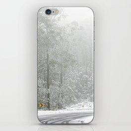 Down the Summit iPhone Skin