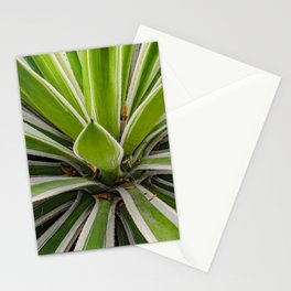 Tropical Plant Detail, Botanic Garden, Guayaquil Stationery Cards