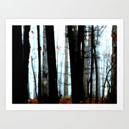 Foggy Wood Art Print