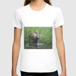 Poppy Pondside T-shirt