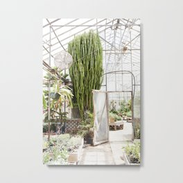 Giant Cactus in the Greenhouse Metal Print