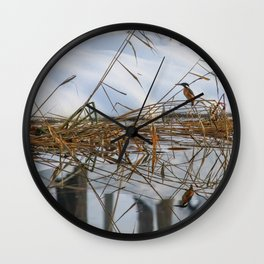 Kingfisher, Alcedo atthis, on frosty cane, bush covered with snow, Reflecting in water Wall Clock
