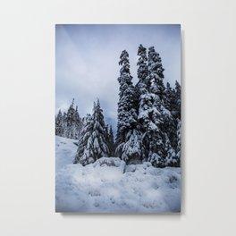 Joffre Lake Metal Print
