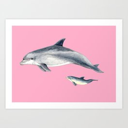Bottlenose dolphin pink Art Print