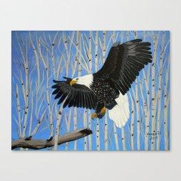 Bald Eagle-3 Canvas Print