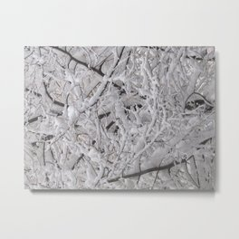 Snow laden trees Metal Print