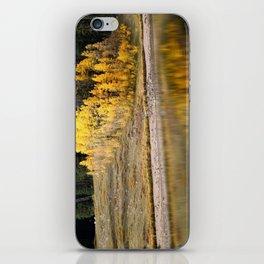 Reflecting on Autumn iPhone Skin