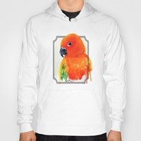 parrot Hoodies featuring Parrot by Paint the Moment