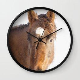 Modern Equestrian Photo Wall Clock