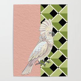 Cockatoo Vibes Poster