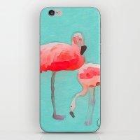flamingos iPhone & iPod Skins featuring Flamingos  by Xchange Art Studio