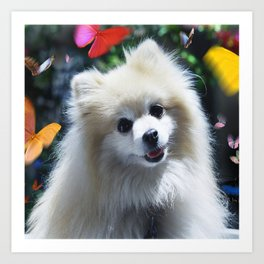 Buffy the Celebrity Pomeranian and Butterflies Art Print