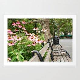 City Bench Flowers Art Print