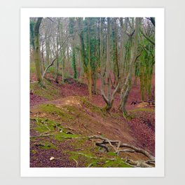 Forest Floor In The Fall Art Print