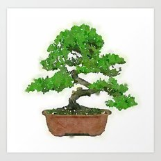 Japanese Bonsai Tree Art Print