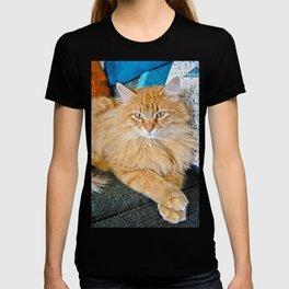 Boppy T-shirt