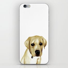 Labrador puppy iPhone Skin