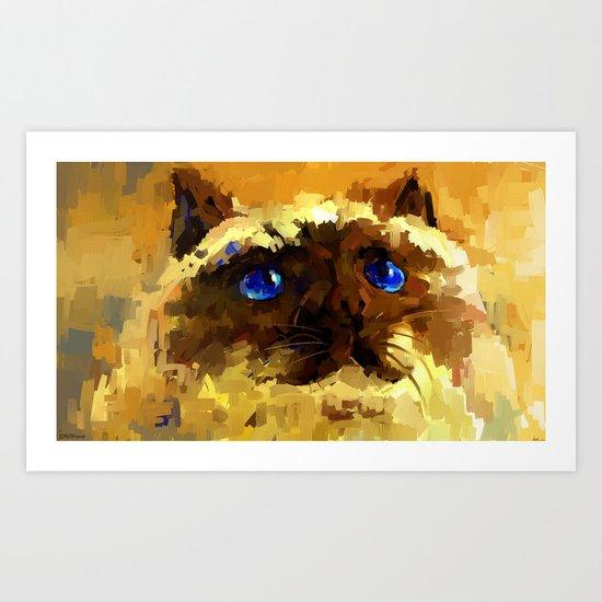 Himalaya cat  Art Print