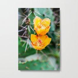 Every Desert Blooms Metal Print