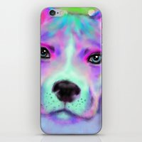 pitbull iPhone & iPod Skins featuring Funky Pitbull by Sally Rowland Art