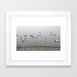 Foggy Lagoon  Framed Art Print