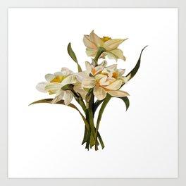Double Narcissi Spring Flower Bouquet Art Print