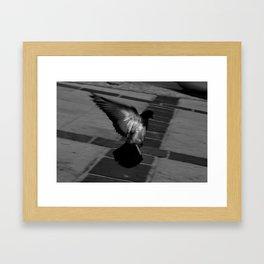 Flight 01 Framed Art Print