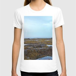 Tidal Shelf and the Fog T-shirt