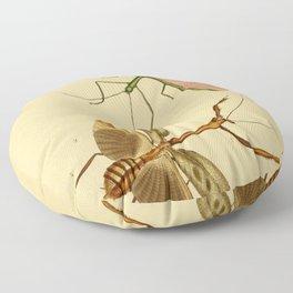 Naturalist Stick Bugs Floor Pillow