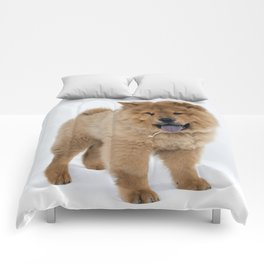 Chow Chow Puppy Comforters
