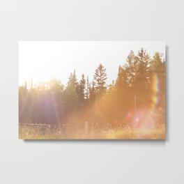 All the Pretty Colors Metal Print