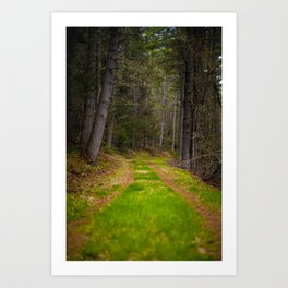 the mindful path Art Print