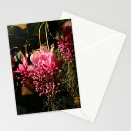 Marvelous  Magnifica Stationery Cards