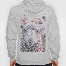 Animal ArtStudio 1819 Sheep Hoody