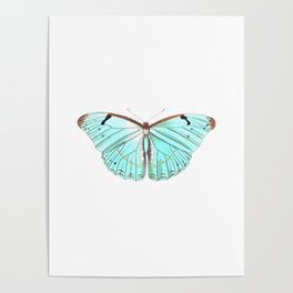 Butterfly Flutter By Poster