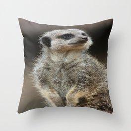 Meerkat Pose Throw Pillow