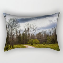road in a forest Rectangular Pillow