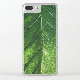 Botanical Gardens Leaf #101 Clear iPhone Case