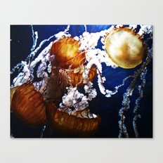 One Bright Jelly Canvas Print