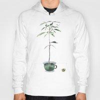 avocado Hoodies featuring Avocado Tree by J Arell