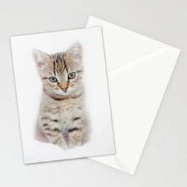little pepe Stationery Cards