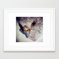 falcon Framed Art Prints featuring Falcon by Aaron Carberry