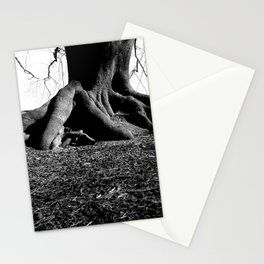 Trunks of tree Stationery Cards