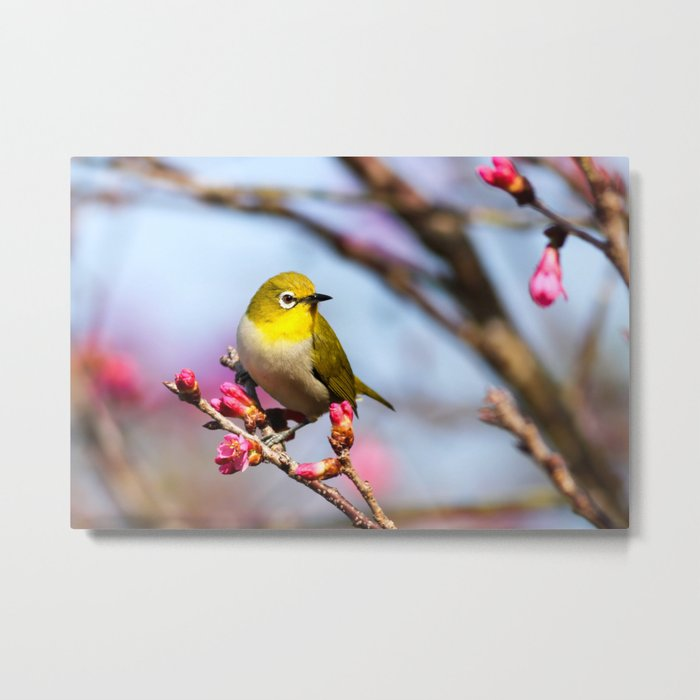 yellow little bird Metal Print