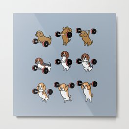 Olympic Lifting Beagles Metal Print