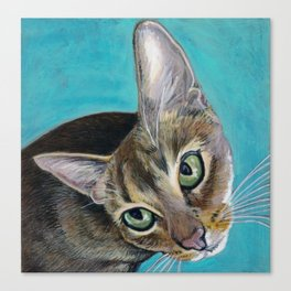 Juba the Abyssinian Cat Canvas Print