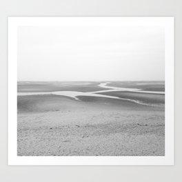 Salt & Sea Art Print