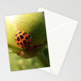 lady bug Stationery Cards
