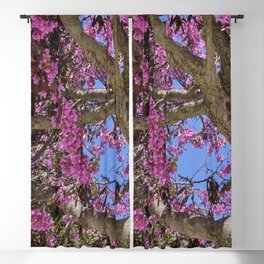 Love tree. Spring at the Alhambra Blackout Curtain