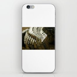 Reptile's brush iPhone Skin